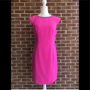 Ted Baker London Pink Fit Flare Sheath Dress 10 US
